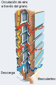 interior d'assecador en ziga-zaga. Les fletxes grogues representen la trajectòria en ziga-zaga que fa el gra quan cau. Les fletxes vermelles el flux d'aire que asseca el gra.
